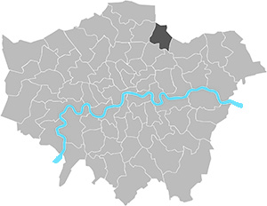 Chingford and woodford green general election