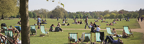 Hyde Park in summer